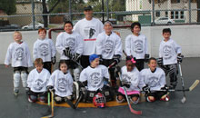 Youth Roller Hockey - Learn To Play