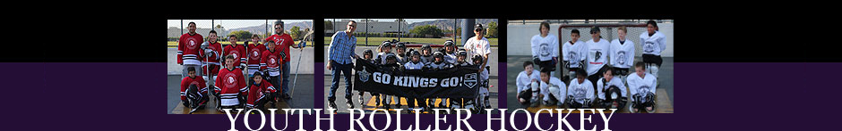 Cage Youth Roller Hockey